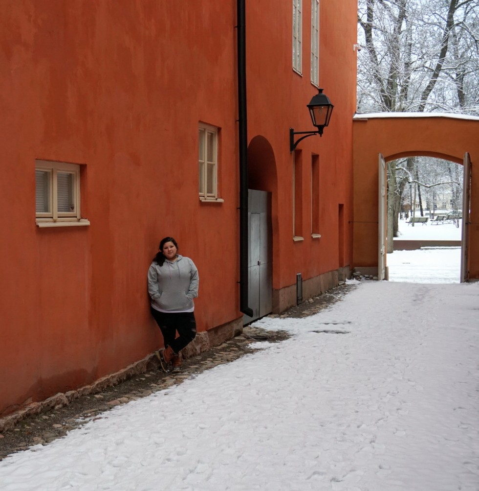 Christmas destination in Turku Finland. They have a lot of romanesqiue/gothic architecture throughout the city and some buildings are have pastel/light airy colors which contrast very nicely against the snow.